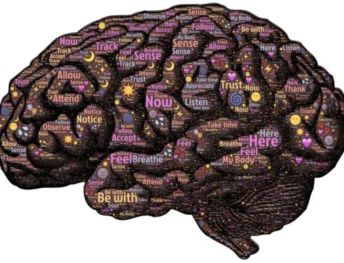 Brain – Gut Connection